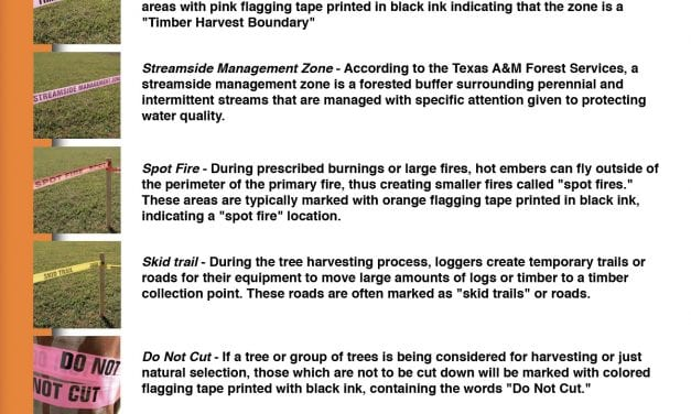 How to Identify Marking Tapes in Forestry